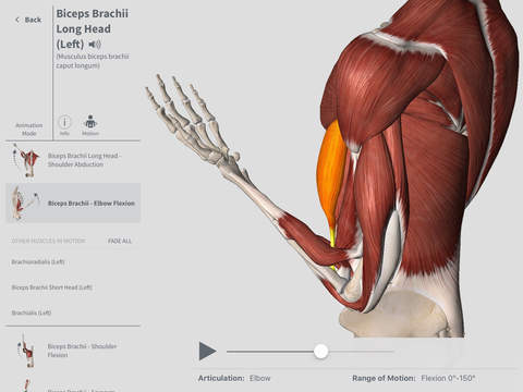 Complete Anatomy #iPad
